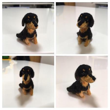 dachshundcollage.jpg